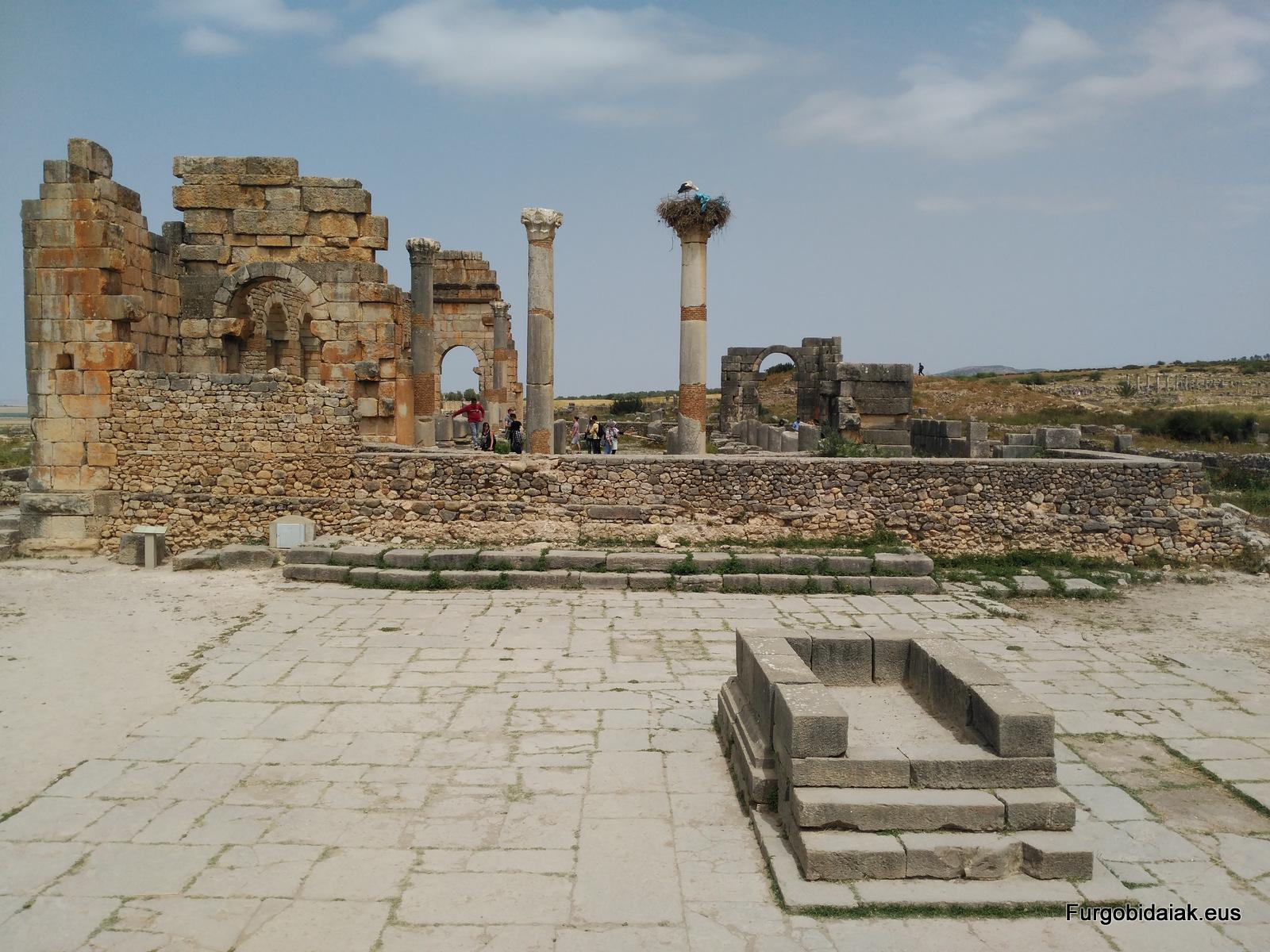 foro y templo de Júpiter Volubilis Marruecos