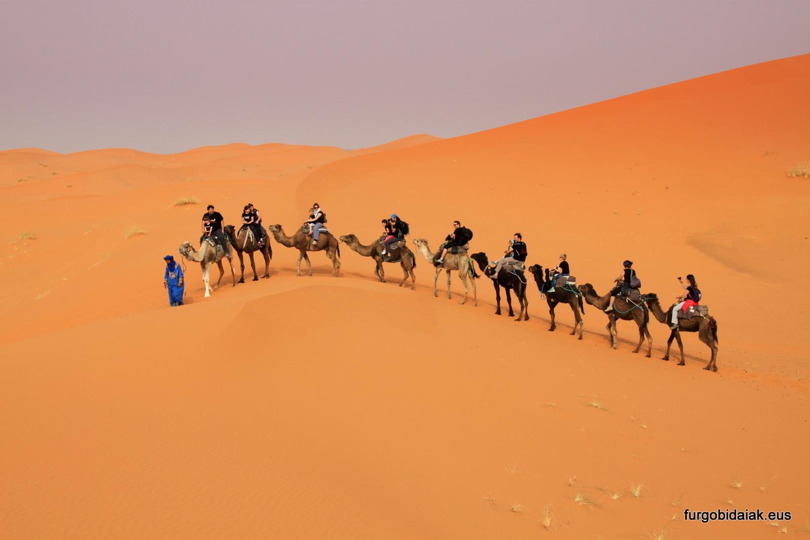 viajar en grupo, consejos para viajar a Marruecos