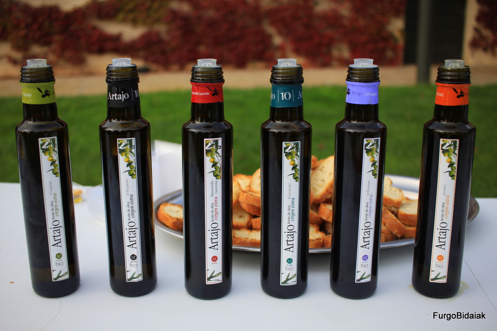 variedades de aceite Artajo, oleoturismo