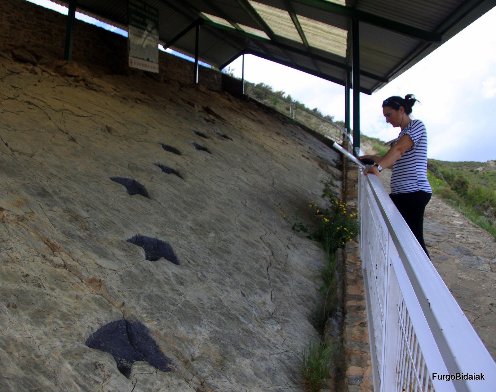 Ruta de los dinosaurios , yacimiento los Cayos, La Rioja