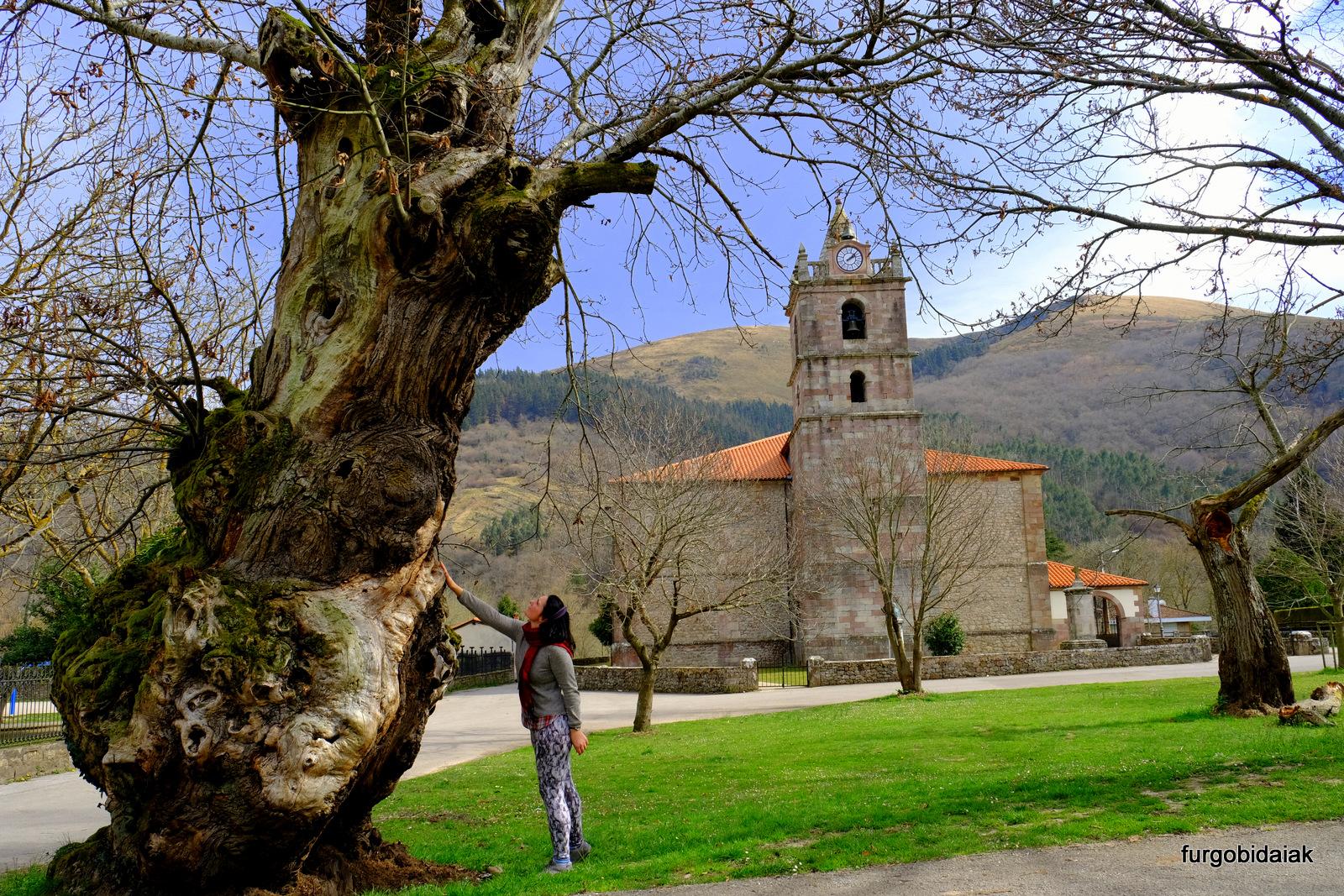 La Castañera, Terán, Cantabria