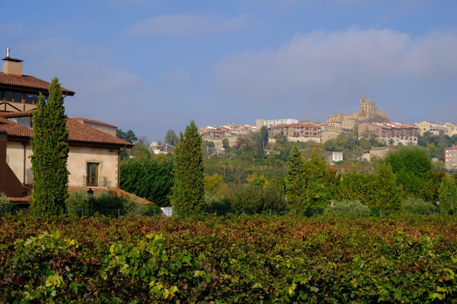 Villa Lucía, Laguardia, Centro temático del vino inclusivo, Rioja Alavesa