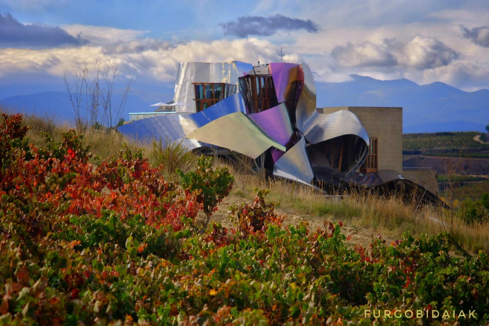 La Rioja Alavesa, bodegas Marqués de Riscal, paseando entre viñedos
