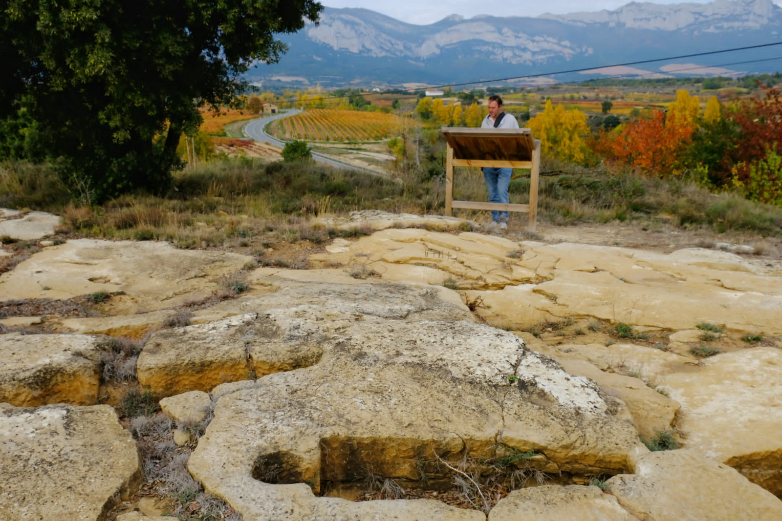 Necrópolis de Santa Eulalia, La Rioja Alavesa, Patrimonio